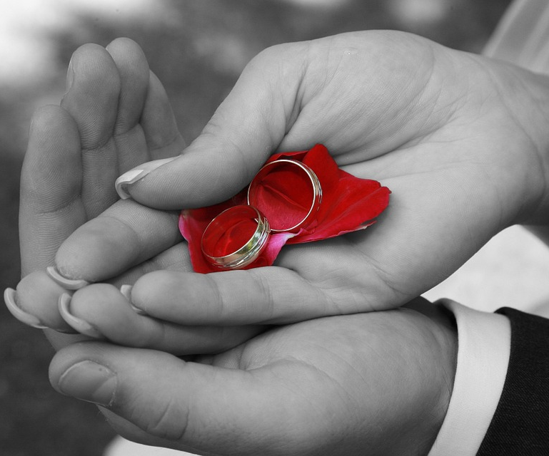 hands holding wedding rings and rose petals.